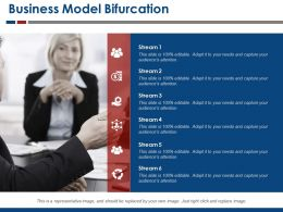 Business Model Bifurcation Ppt Examples Slides