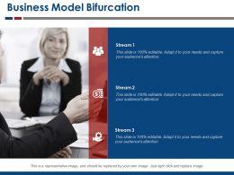 Business Model Bifurcation Ppt Sample Download