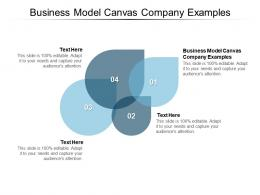 Business Model Canvas Company Examples Ppt Powerpoint Presentation Visual Aids Outline Cpb