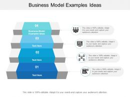Business Model Examples Ideas Ppt Powerpoint Presentation Model Information Cpb