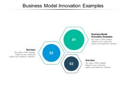 Business Model Innovation Examples Ppt Powerpoint Presentation Portfolio Picture Cpb