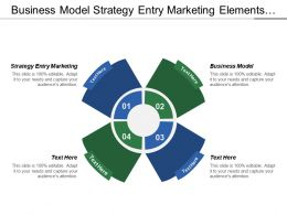 Business Model Strategy Entry Marketing Elements Business Plan