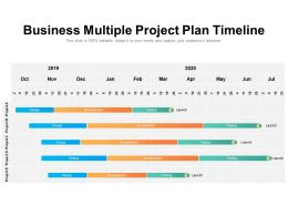 Business Multiple Project Plan Timeline
