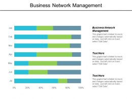 Business Network Management Ppt Powerpoint Presentation Gallery Graphics Cpb