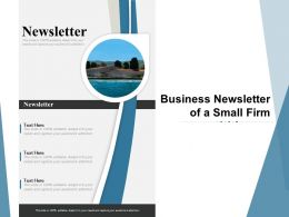 Business Newsletter Of A Small Firm
