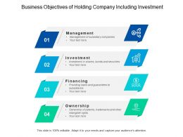 Business Objectives Of Holding Company Including Investment