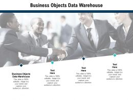 Business Objects Data Warehouse Ppt Powerpoint Presentation Portfolio Brochure Cpb