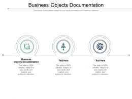 Business Objects Documentation Ppt Powerpoint Presentation Outline Picture Cpb