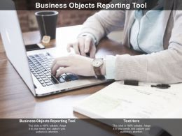 Business Objects Reporting Tool Ppt Powerpoint Presentation Infographics Files Cpb