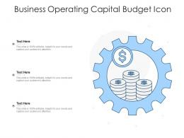 Business Operating Capital Budget Icon