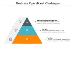 Business Operational Challenges Ppt Powerpoint Presentation Summary Designs Cpb