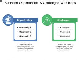 Business Opportunities And Challenges With Icons