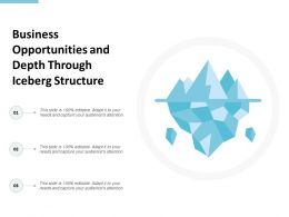 Business Opportunities And Depth Through Iceberg Structure
