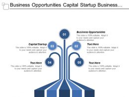 Business Opportunities Capital Startup Business Project Report Business Strategy Cpb