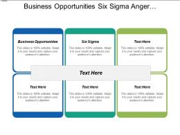 Business Opportunities Six Sigma Anger Management Asset Management Cpb