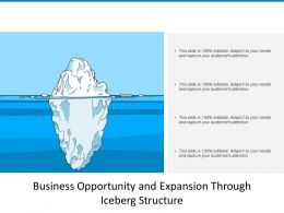 Business Opportunity And Expansion Through Iceberg Structure
