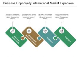 Business Opportunity International Market Expansion Big Data Analytics Cpb