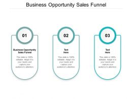 Business Opportunity Sales Funnel Ppt Powerpoint Presentation Portfolio Graphics Template Cpb