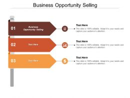 Business Opportunity Selling Ppt Powerpoint Presentation File Ideas Cpb
