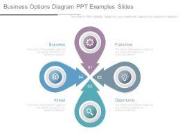 business_options_diagram_ppt_examples_slides_Slide01