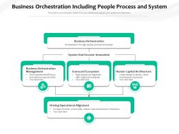 Business Orchestration Including People Process And System