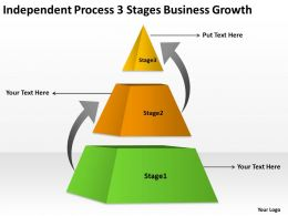 Business Organizational Chart Examples Process 3 Stages Growth Powerpoint Templates 0515