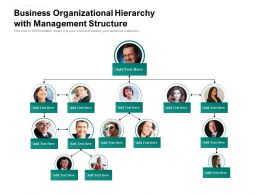 Business Organizational Hierarchy With Management Structure