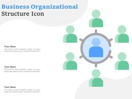 Business Organizational Structure Icon
