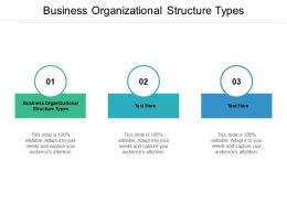 Business Organizational Structure Types Ppt Powerpoint Presentation Good Cpb