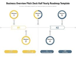 Business Overview Pitch Deck Half Yearly Roadmap Template