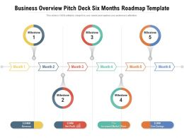 Business Overview Pitch Deck Six Months Roadmap Template