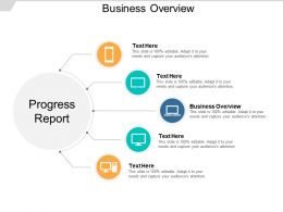 Business Overview Ppt Powerpoint Presentation Inspiration Example File Cpb
