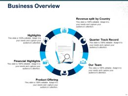 Business Overview Ppt Samples
