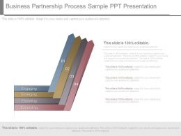 Business Partnership Process Sample Ppt Presentation