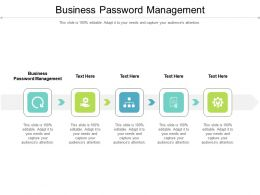 Business Password Management Ppt Powerpoint Presentation Layouts Example File Cpb
