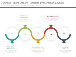 Business Patent Options Template Presentation Layouts