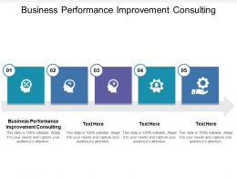 Business Performance Improvement Consulting Ppt Powerpoint Presentation File Model Cpb