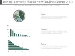 Business Performance Indicators For Web Business Example Of Ppt