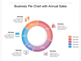 Business Pie Chart With Annual Sales