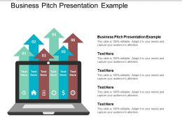 Business Pitch Presentation Example Ppt Powerpoint Presentation Pictures Template Cpb