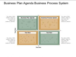 Business Plan Agenda Business Process System Consumer Branding Cpb