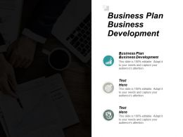 Business Plan Business Development Ppt Powerpoint Presentation Pictures Mockup Cpb