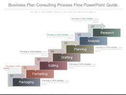 Business Plan Consulting Process Flow Powerpoint Guide