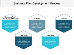 Business Plan Development Process Ppt Powerpoint Presentation File Portfolio Cpb