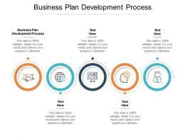 Business Plan Development Process Ppt Powerpoint Presentation Summary Cpb