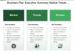 Business Plan Executive Summary Market Trends Drivers
