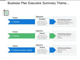 Business Plan Executive Summary Theme Objective Initiatives