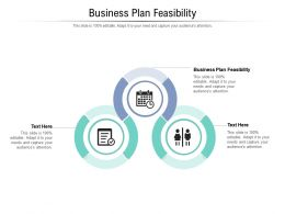 Business Plan Feasibility Ppt Powerpoint Presentation Pictures Skills Cpb