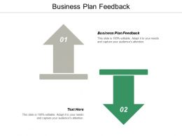 Business Plan Feedback Ppt Powerpoint Presentation File Background Image Cpb