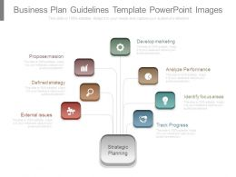 Business Plan Guidelines Template Powerpoint Images
